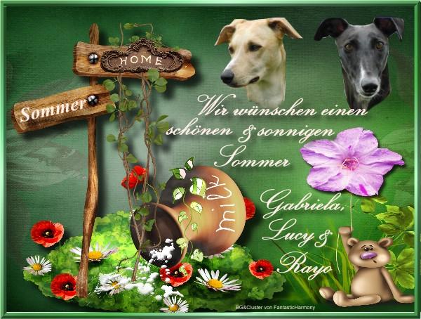 An den Beitrag angehängtes Bild: http://www10.pic-upload.de/19.06.12/toaxgtmykff9.jpg