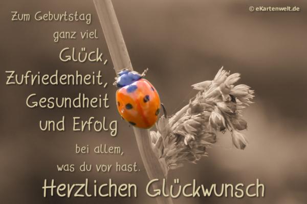 Geburtstags-Glückwünsche - Seite 82 - Storchennest.de, Whatsapp